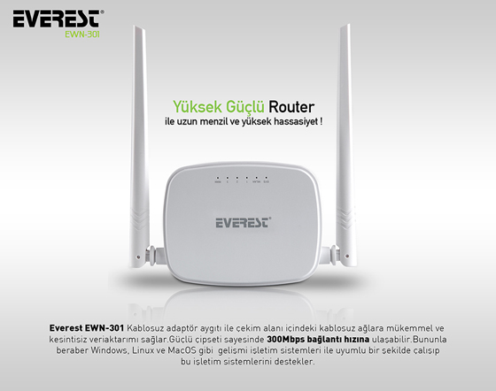 everest-ewr-301-access-point-router-1